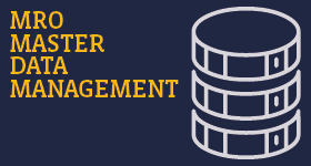 MRO Master Data Management